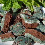 Mint Chocolate Spirulina Fudge – Vegan and Sweetened with Xylitol