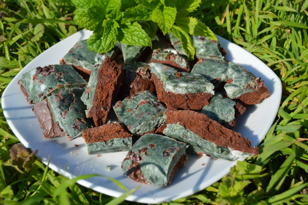 Mint Chocolate Spirulina Fudge - Vegan and Sweetened with Xylitol in the garden