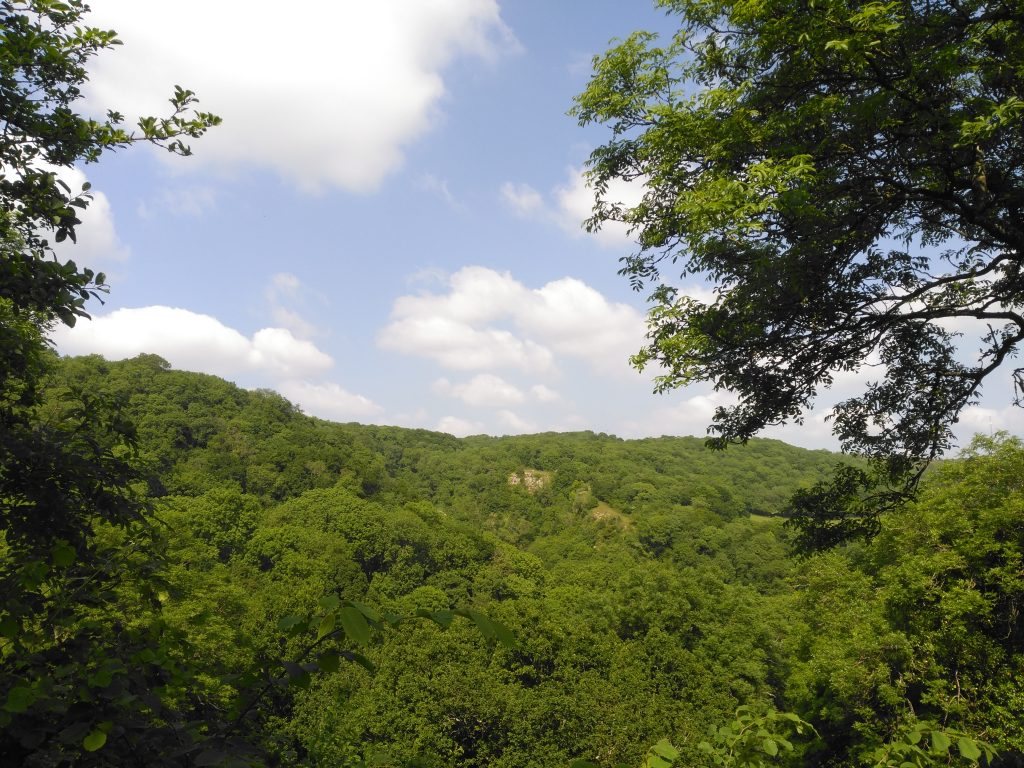 View of ebbor gorge from a distance