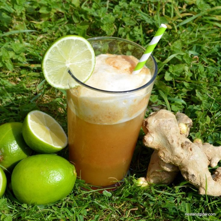 Fiery Ginger Beer Recipe