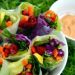 Summer Rolls with Zesty Sauce