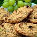 3 Ingredient Cookie Oat Biscuits
