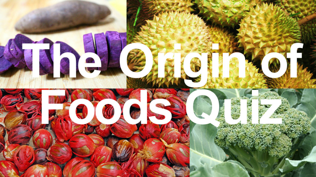 origin of food quiz