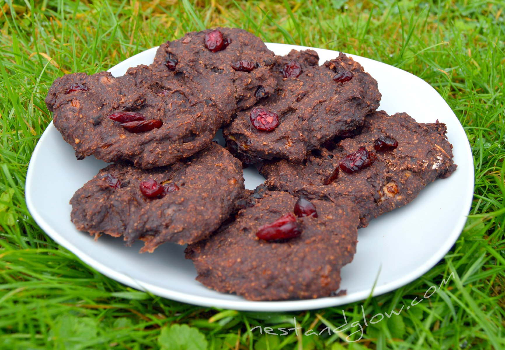 4 Ingredient Chocolate Cranberry Cookies Recipe