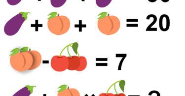 Aubergine Peach Cherries Maths Puzzle