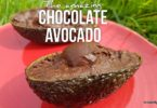 Chocolate Avocado Fruit