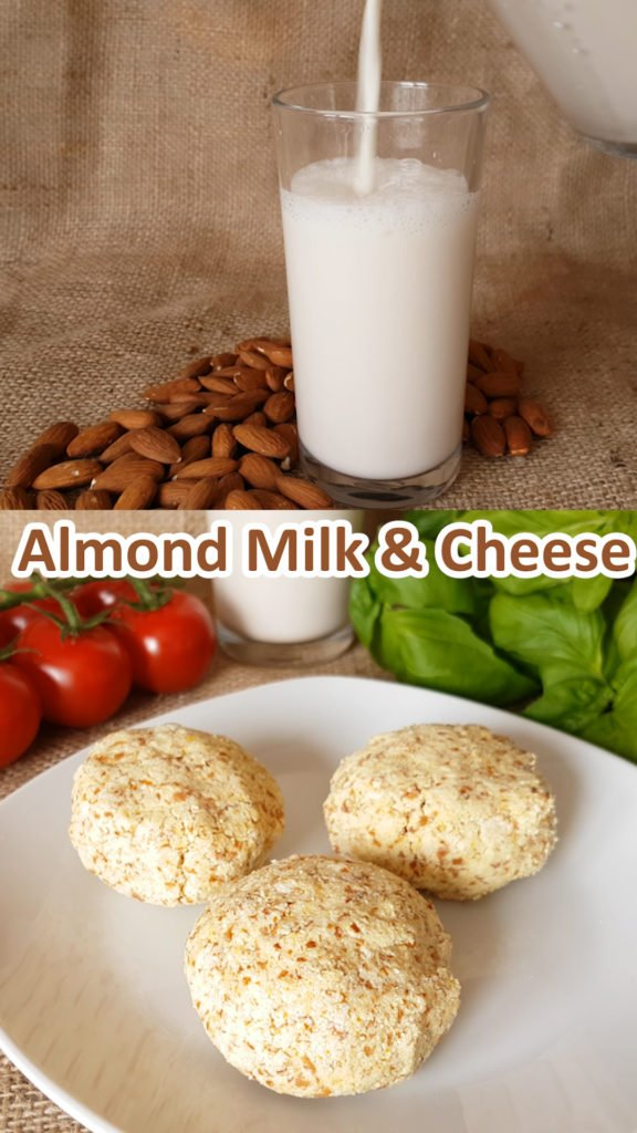 Almond Milk and Almond Pulp Cheese Recipes that use the pulp after making almond milk so nothing is lost