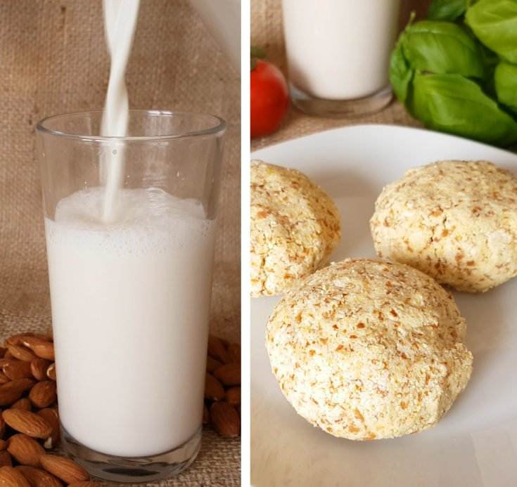 Almond Milk and Almond Pulp Cheese