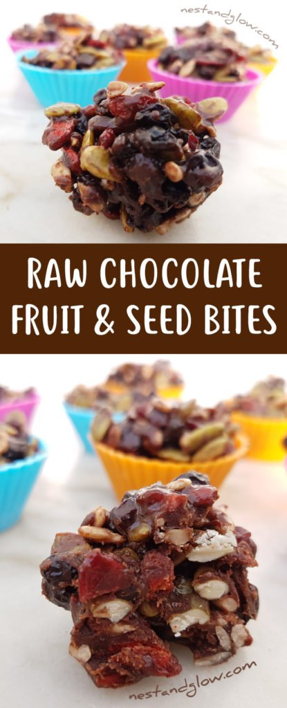 Raw Chocolate Fruit and Seed Bites Recipe - Easy, Vegan and Healthy