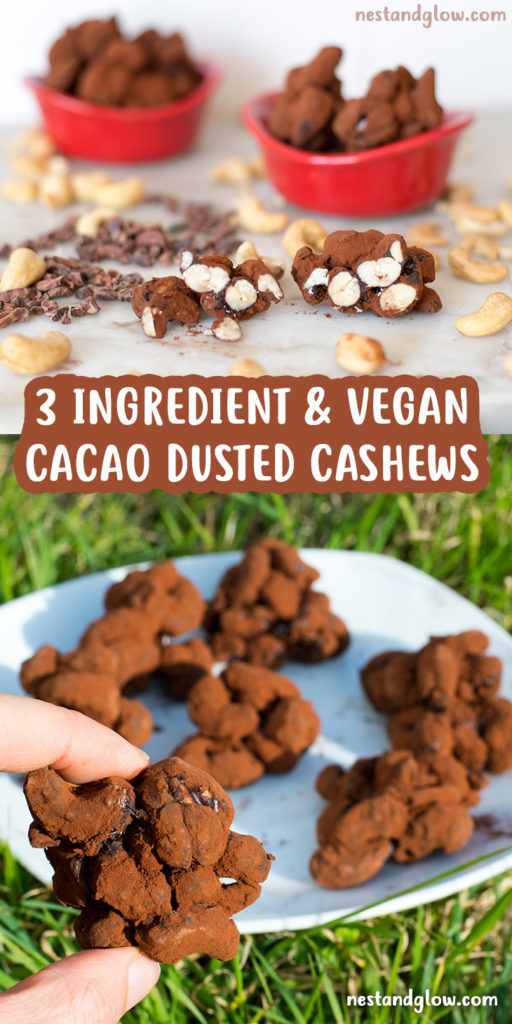 cacao dusted cashews vegan