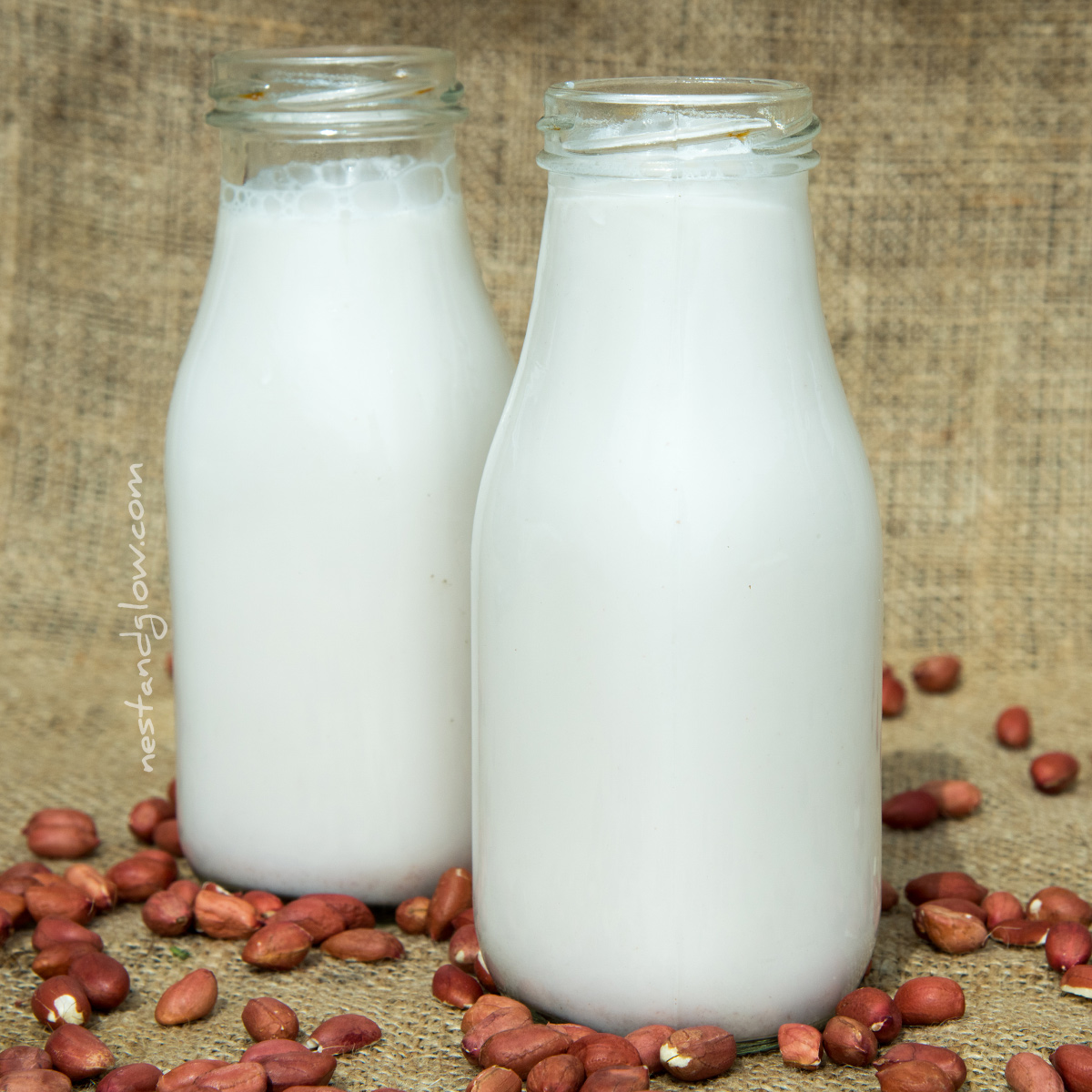 Sprouted Peanut Milk 2-Ingredients