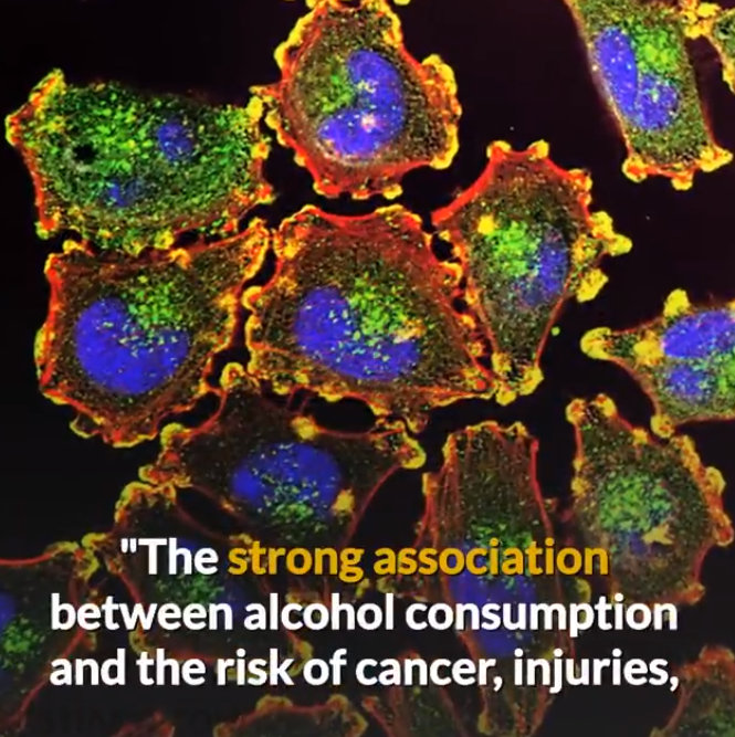 wine increases cancer and injuries