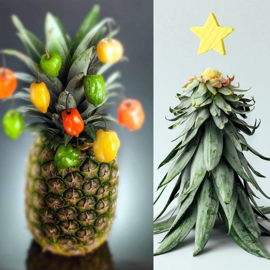Christmas Pineapple.Pineapple Christmas Trees Are The Perfect Zero Waste And