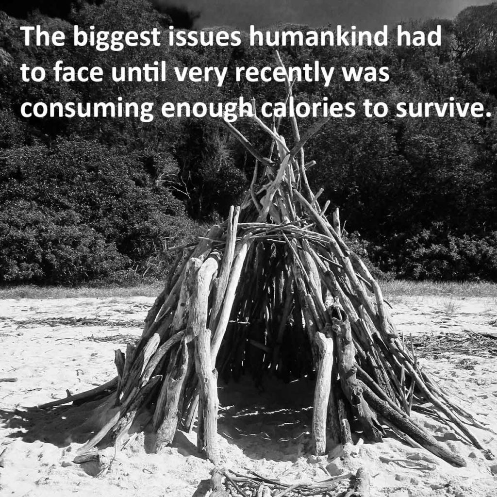 The biggest issues humankind had to face until very recently was consuming enough calories to survive.